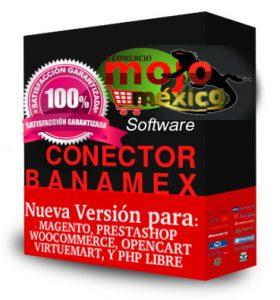 banamex conector bancario
