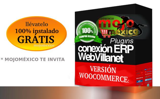 Conexion miniERP con tiendas Web Profesionales