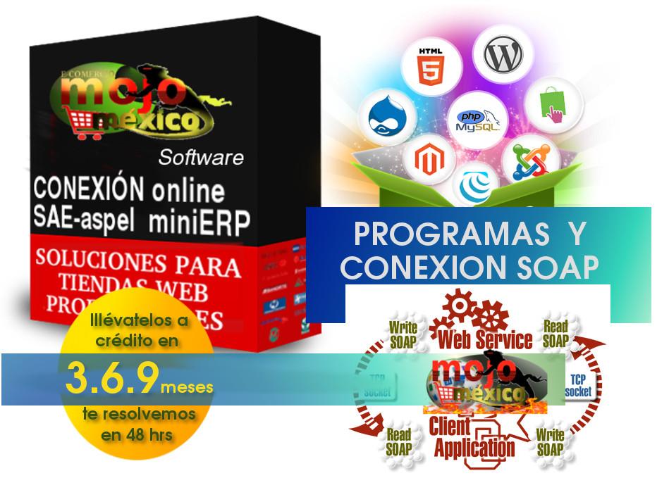 Conexion ERP webservice