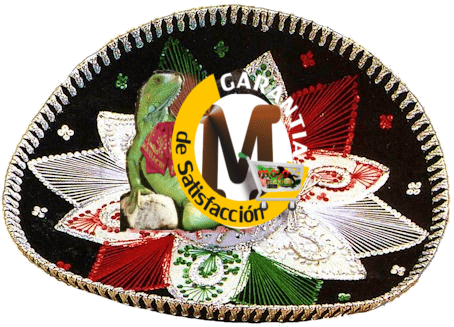 Mojomexico Programas